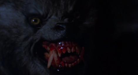 american-werewolf-610x332